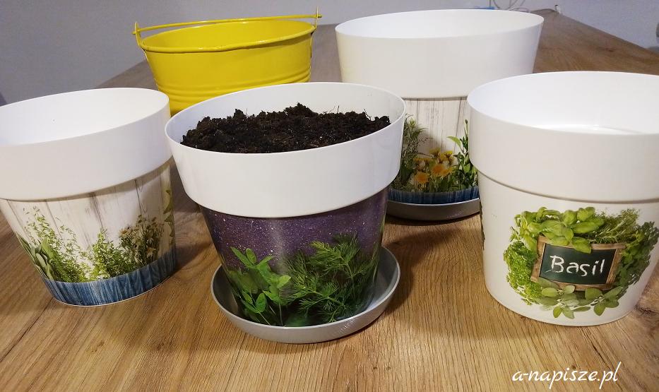 doniczki na zioła i przyprawy