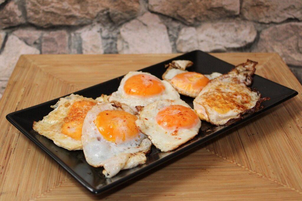 jajka posiłki białkowe