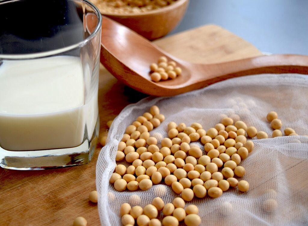 rośliny strączkowe mleko