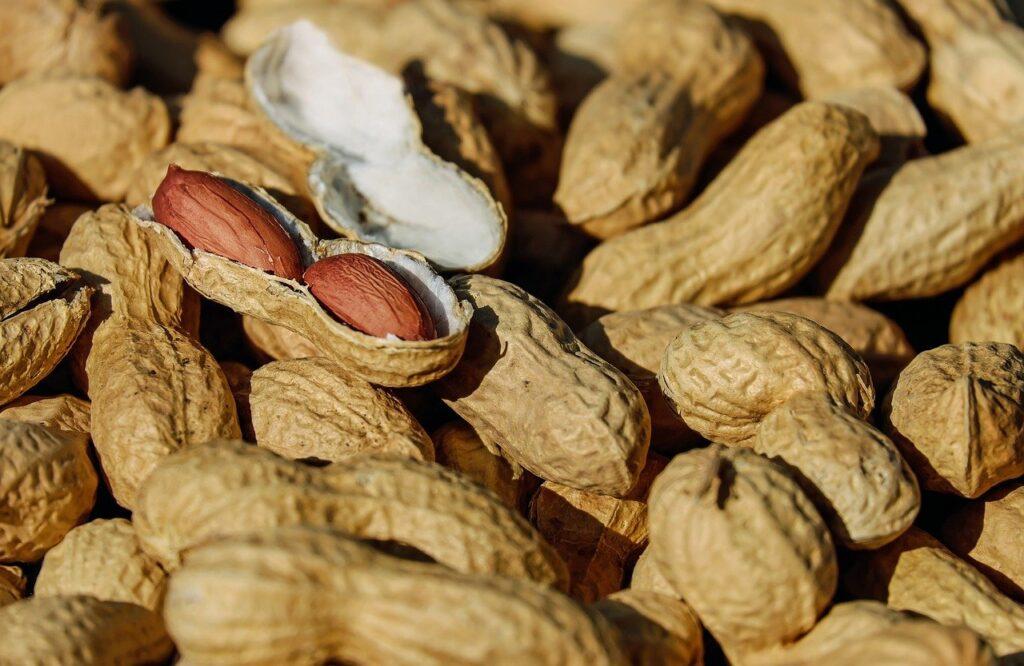 orzeszki ziemne białko na diecie