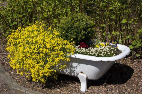 relaksująca ziołowa kąpiel