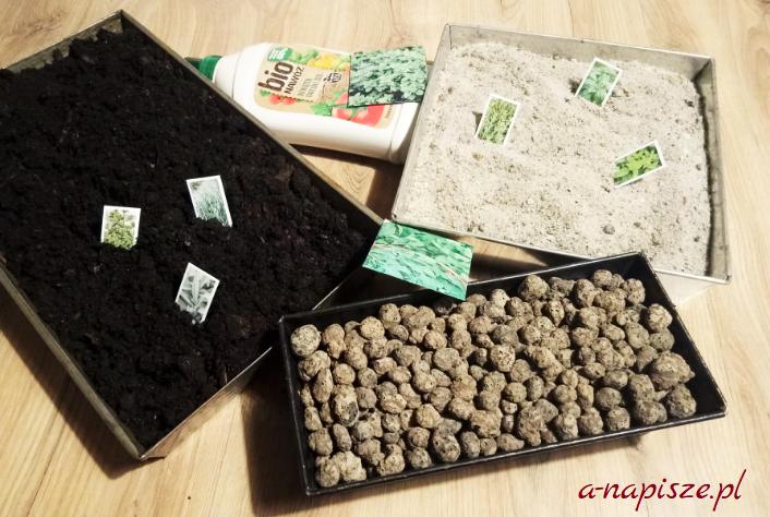 przygotowanie podłoża do doniczek z ziołami