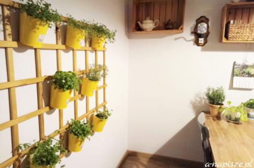 miejsce na świeże zioła w doniczkach w kuchni